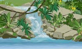 Водопад в джунглях Утес, creepers, банановые деревья и эпифитные папоротники иллюстрация вектора