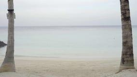 Воссоздание лета, гостиная фаэтона пляжа на тропическом пляже с пальмами против теплой воды и небо видеоматериал
