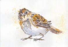 Воробей. Wathercolor ink bird sparrow Vector Illustration