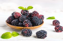 �unch of wild berries and mint Royalty Free Stock Photography