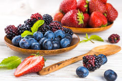 �unch of wild berries Royalty Free Stock Photo