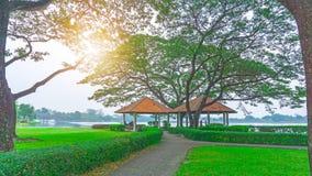 Газебо 2 с оранжевой крышей под зелеными листьями большого дерева дождя на лужайке зеленой травы и кустарника, серой дорожки карт стоковые фотографии rf