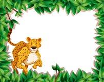 Гепард в сцене природы бесплатная иллюстрация