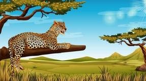 Гепард в сцене дерева иллюстрация вектора