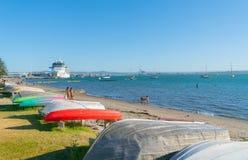 Гигантский солнцеворот знаменитости туристического судна стоковое изображение rf