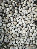 Гравий камешков аранжированный, что в саде украсить материал текстуры предпосылки земной картины стоковые изображения rf