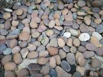 Гравий камешков аранжированный, что в саде украсить предпосылку земной картины стоковые изображения