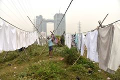 Грязная прачечная: Washerman моет одежды в загрязненной воде стоковое фото