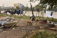 Грязная прачечная: Washerman моет одежды в загрязненной воде стоковые изображения