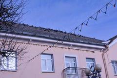 Голуби на крыше дома с розовыми стенами стоковая фотография