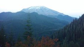 Гора PNW стоковые фото