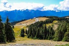 Горный вид в олимпийской горной цепи, олимпийский национальный парк, Вашингтон, США стоковые изображения rf