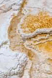 Горячие источники террасы Minerva стоковое изображение