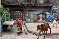 Ежедневная жизнь города Kolkata стоковые фотографии rf