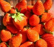 естественные и свежие красные клубники на таблице готовой для еды стоковое изображение