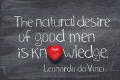 Естественное желание Da Vinci стоковая фотография rf