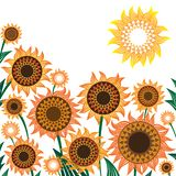 Желтая и оранжевая иллюстрация вектора солнцецветов иллюстрация штока