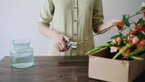 Женский флорист кладет цветки в стеклянную вазу и делать новые цветочные композиции Женщина комплектуя свежие цветки от коробки сток-видео