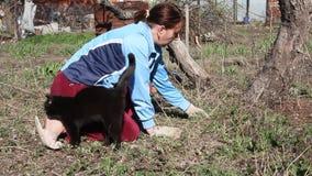 Женщина и черный кот акции видеоматериалы