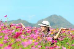 Женщина путешественника азиатская ослабляет и свобода в красивом зацветая цветочном саде космоса около горы в утре восхода солнца стоковые фото