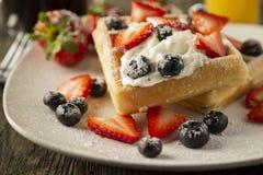 Завтрак бельгийской вафли стоковое изображение rf