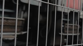 Загородка безопасности на платформе станции Движение поезда рельсом сток-видео