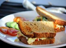 Зажаренный сэндвич яйца с томатами стоковые фото