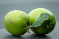 Закройте вверх зеленых индийских Ber стоковое фото