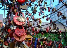 Замки любов и точности воспроизведения на деревьях свадьбы счастья стоковая фотография rf