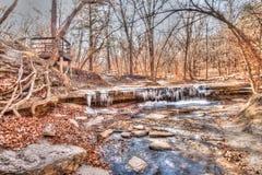 Замороженный поток в древесинах стоковое изображение rf