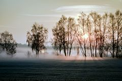Заморозок и туман ночи над полями