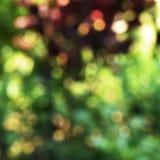Запачканный свет для абстрактной предпосылки стоковая фотография