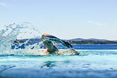 Заплывы человека в бассейне стоковые изображения rf