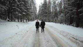 Задний взгляд молодых и красивых пар идет в человека и женщину Milennials леса зимы имея потеху Зима акции видеоматериалы