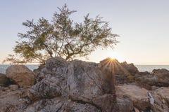 Заход солнца над утесом и морем стоковая фотография rf