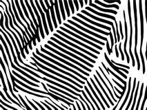 Зебра Stripes картина Печать зебры, шкура, нашивки тигра, абстрактная картина, линия предпосылка, ткань иллюстрация вектора