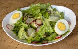 зеленый салат в белой плите на деревянной предпосылке стоковые фотографии rf