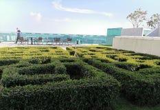 Зеленый стол стоковое фото rf