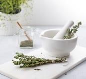 Зеленый тимиан на древесине здоровья белой ароматности миномета травяной пряной стоковое фото
