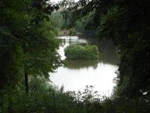 Зелёный островок. Green island. Stock Photography