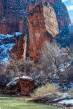 Зима реки девственницы стоковое изображение rf