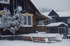Зима Stock Images