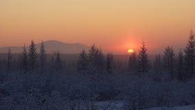 Зимний рассвет Stock Images