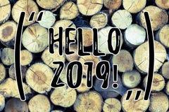 Знак текста показывая здравствуйте! 2019 Схематическое фото начиная сообщение 2017 Нового Года мотивационное сверх теперь деревян стоковая фотография