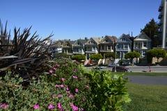 Здания города Сан-Франциско покрасили дам стоковое фото