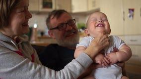 Зрелая женщина щекочет младенца Ребенок смеется показывающ его белые зубы молока Внук медсестры Grandpa и бабушки сток-видео