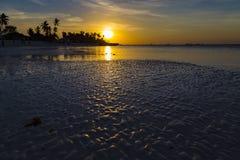 Золотой заход солнца над побережьем океана во время отлива стоковое изображение rf