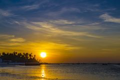 Золотой заход солнца над побережьем океана стоковое изображение rf