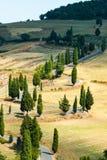 Извилистая дорога около Monticchiello и Pienza в Тоскане, Италии стоковая фотография rf
