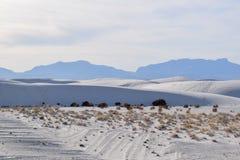 Изумляя белые пески дезертируют в Неш-Мексико, США стоковая фотография
